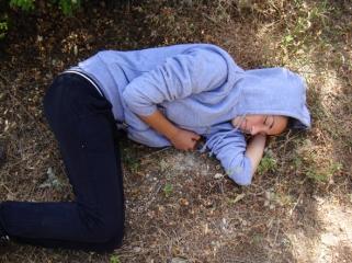sleeper in the wood