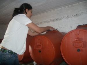Inside Maneta's cellar 2