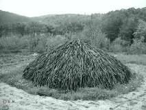 02 wood to make charcoal
