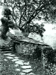 19 barn under oak