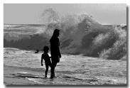Fascination surf