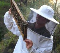 Xenia and her bees in Ikaria