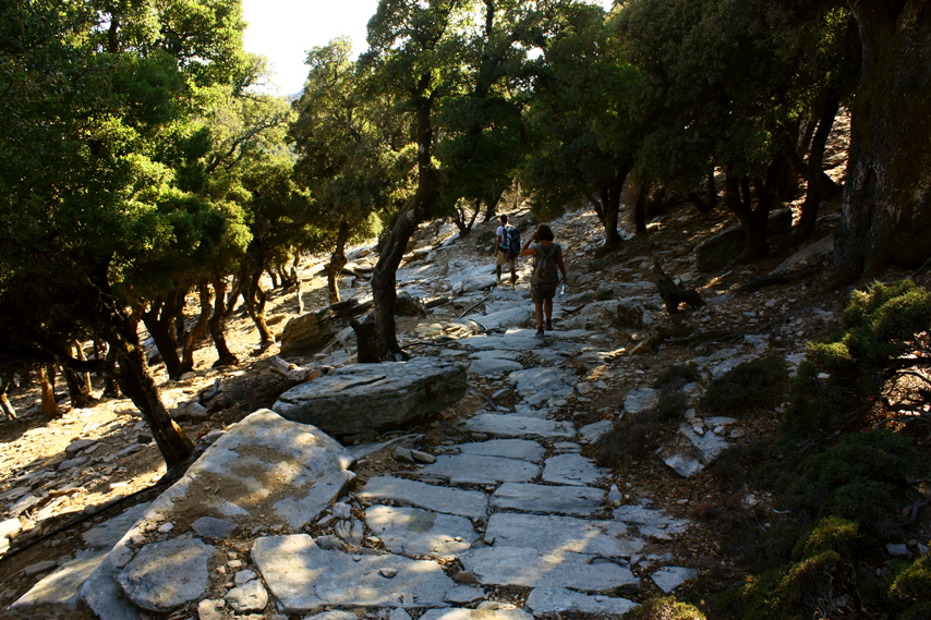 Walking down to Karkinagri on a beautiful stone paved lane for a while