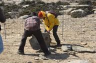 Picture 35: Oasificators moving stones